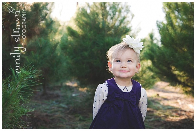 strawn photography - christmas tree mini_0146